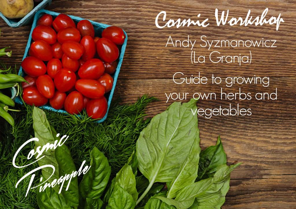 Garden Workshop Cosmic Pina
