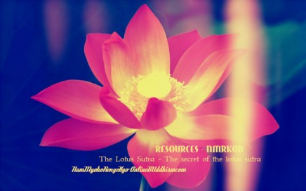 Mantra focus: Nam Myoho Renge Kyo