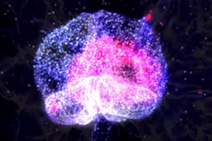 Watch: Psychedelics and Consciousness